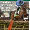 Six-page Cheltenham Festival 2014 Souvenir Special in this week's Irish World