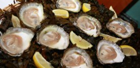 Head to Galway for Ireland's original oyster festival