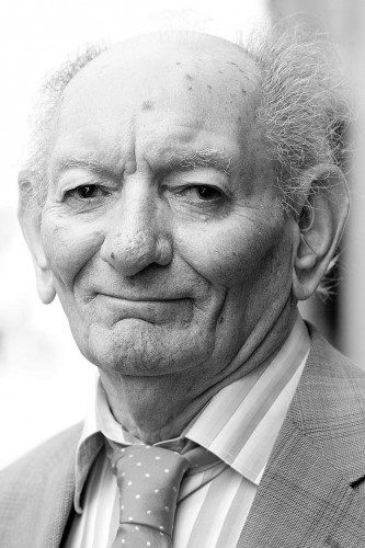 Theatre world mourns loss of Brian Friel