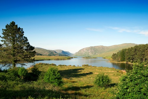 Glenveagh National Park - Golden Eagles under severest threat in Donegal