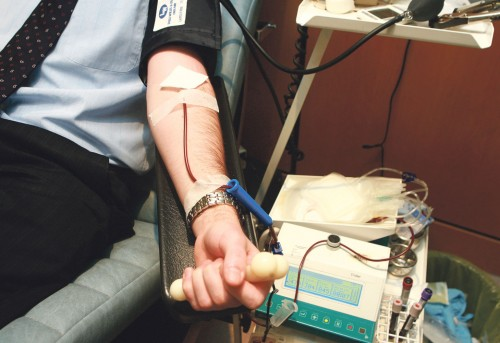 Stormont expected to lift blood donations ban on gay people