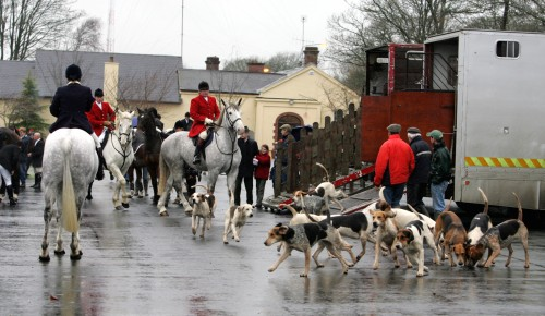 JobBridge in fox hunting gaffe