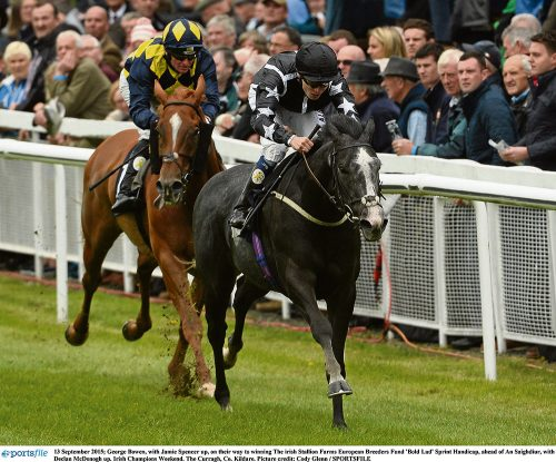 Racing: Ascot Tips Thursday and Friday
