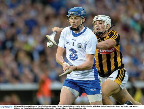 GAA Composed Kilkenny Cats