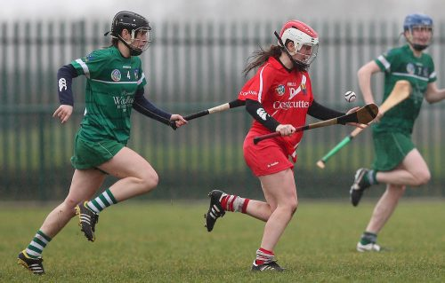 Camogie Neville relishing Intermediate opportunity