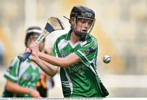 Wins for Limerick and Kilkenny