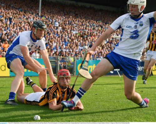 waterford tame brian cody's kilkenny cats
