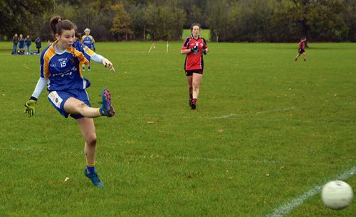 Parnells Ladies Gaelic football team complete clean sweep