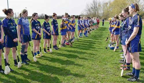 Etty Kelly remembered Tara Camogie sevens