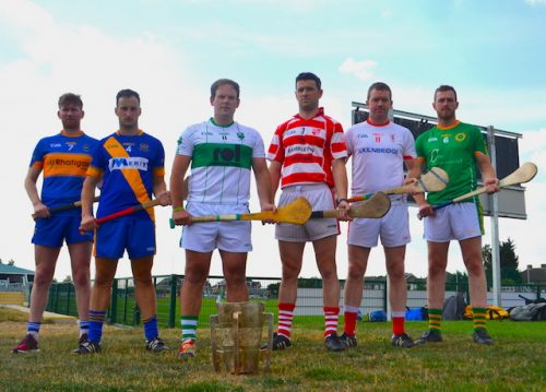 Irish world senior hurling championship only one winner