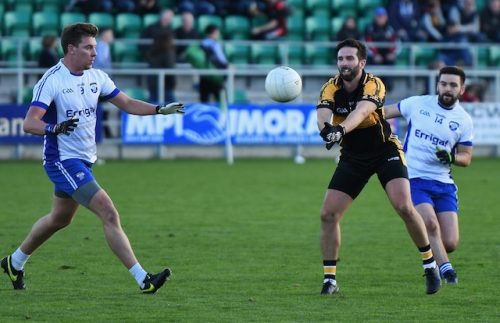 Neasden Gaels heading back to senior championship